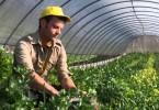 agevolazioni-per-linsediamento-di-giovani-in-agricoltura