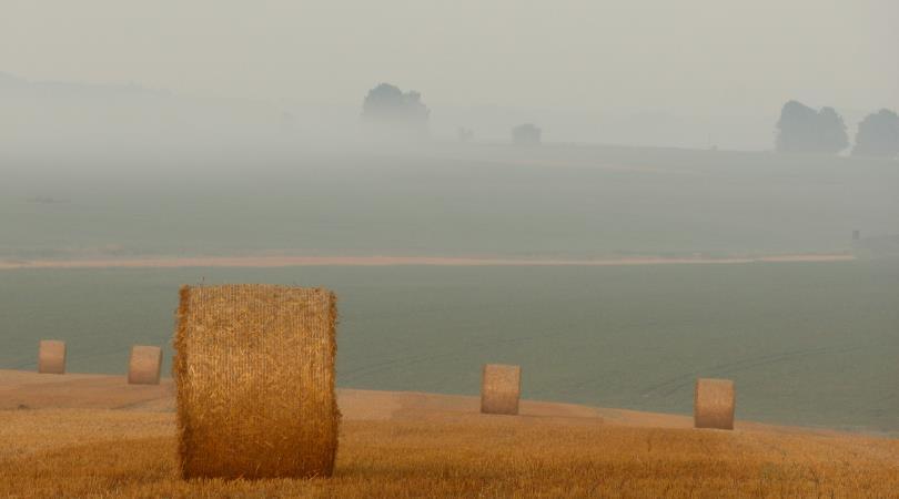 voucher-in-agricoltura
