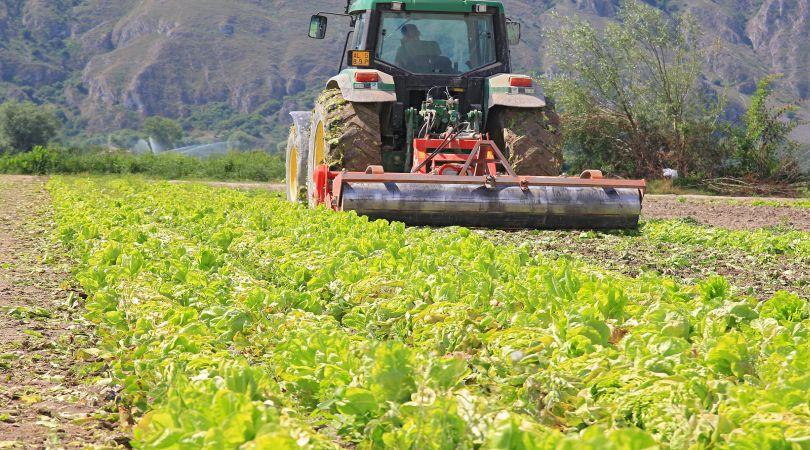 contributi per le aziende agricole piemonte