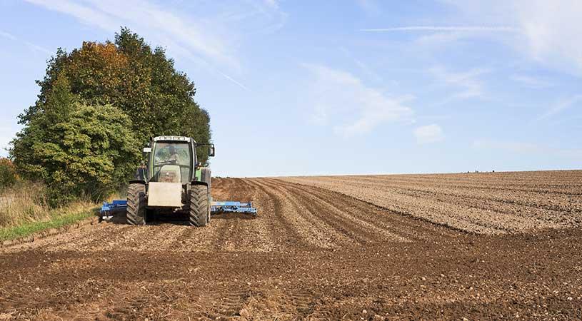 incentivi per il ripristino dei terreni agricoli