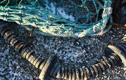 bando pesca regione marche