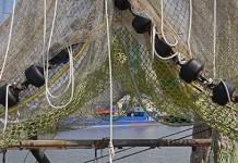 bandi sulla pesca