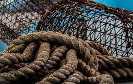 finanziamenti settore ittico emilia romagna