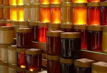 finanziamenti per apicoltura veneto