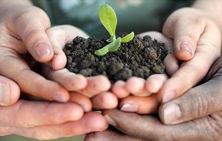 bando agricoltura sociale 2017