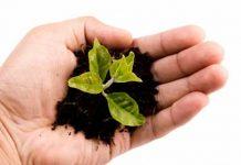 contributi premi assicurativi in agricoltura